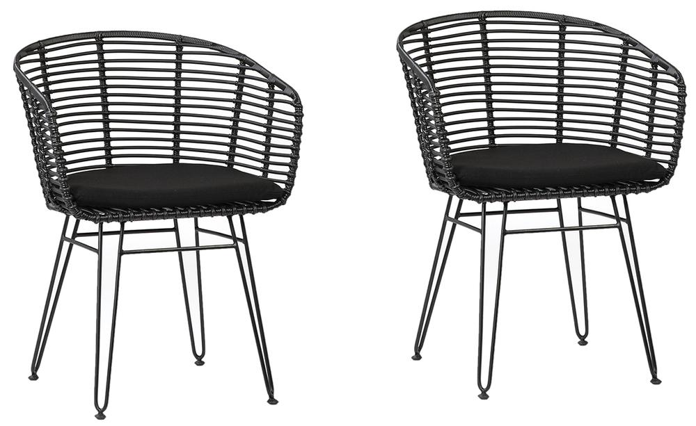 Dovetail Furniture - Ishani Dining Chairs, Set/2