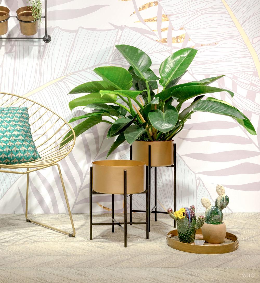Zuo Modern Contemporary - Hyde Lounge Chair, Set/2, Gold