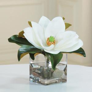 Thumbnail of Winward - Magnolia Cube (White/Green)