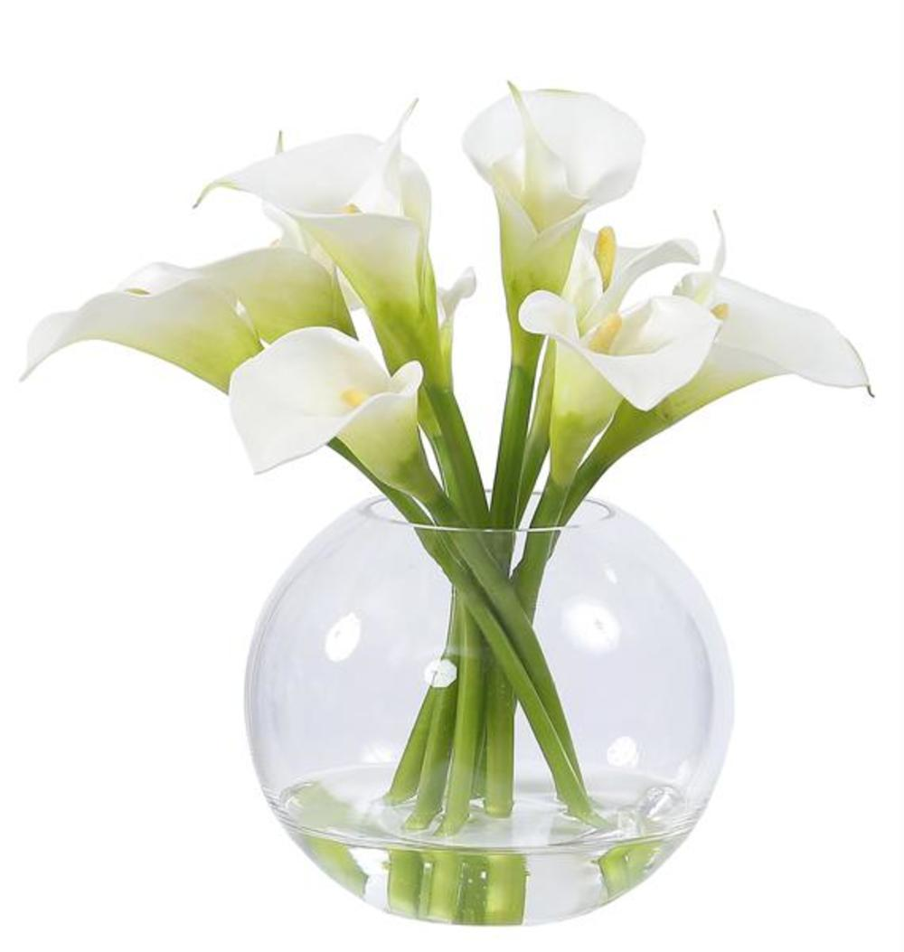 Winward - Calla Lily, Glass  (White)