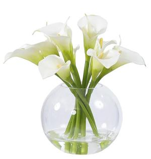 Thumbnail of Winward - Calla Lily, Glass  (White)