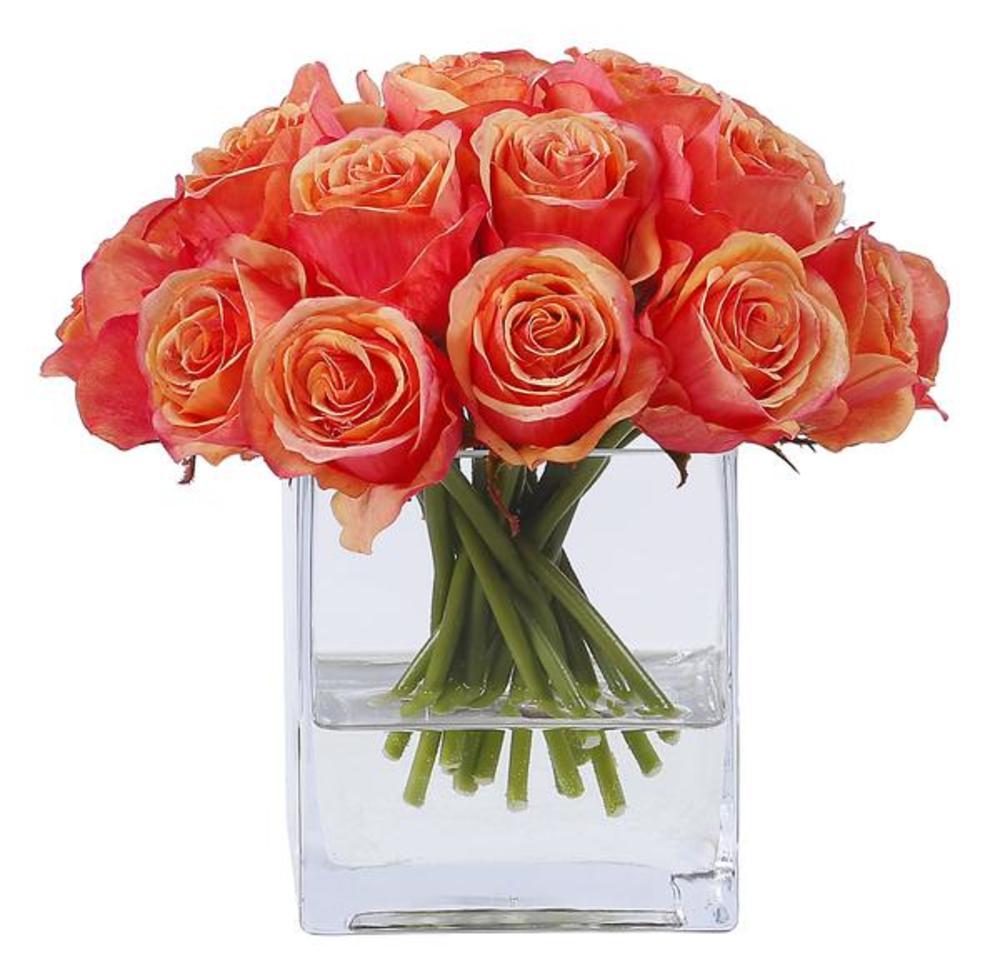 Winward - Rose Bud, Square Glass (Peach/Red)