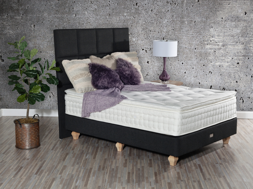 Paramount Sleep - Nature's Reign Camellia Pillow Top Mattress with Low Profile Box Spring