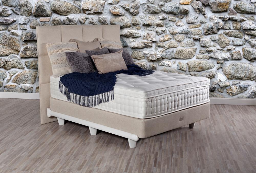 Paramount Sleep - Nature's Reign Magnolia Euro Top Plush Mattress with Standard Box Spring