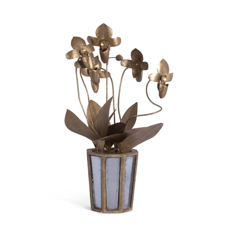 Bliss Studio - Slipper Orchid