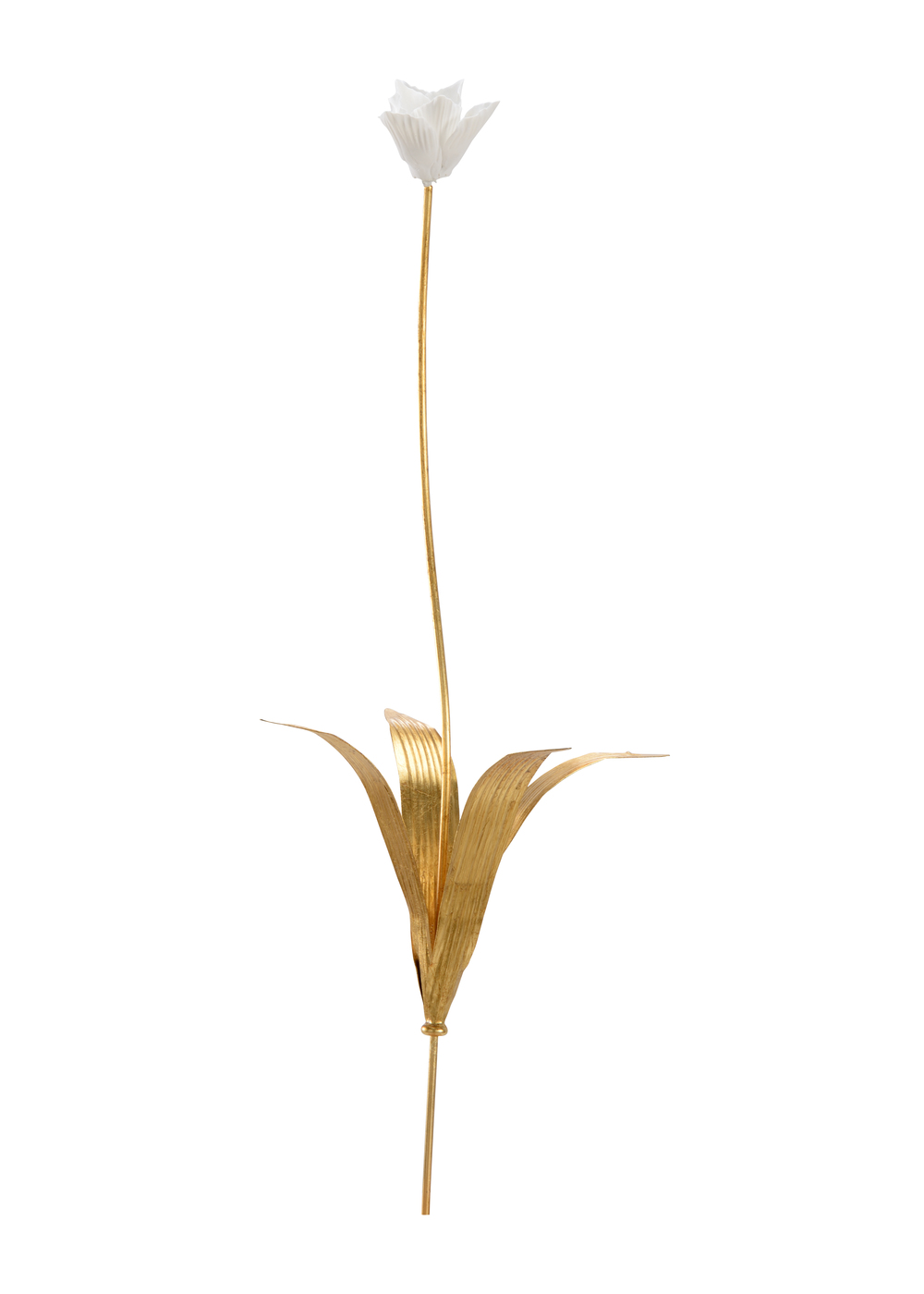 Chelsea House - Tulip Stem