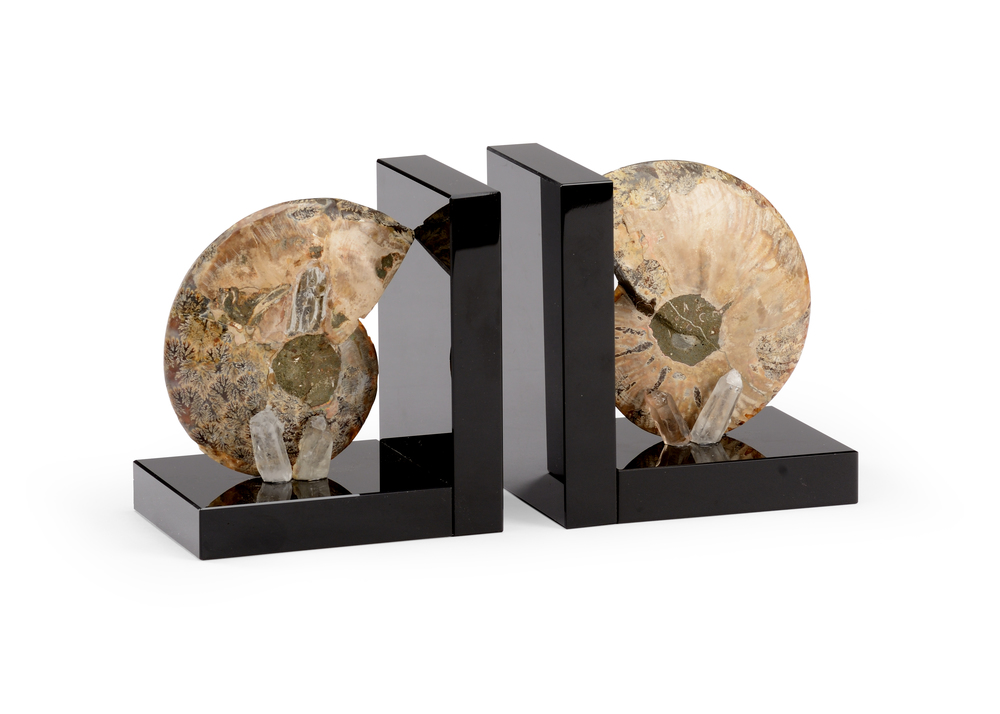 Chelsea House - Fossil Bookend