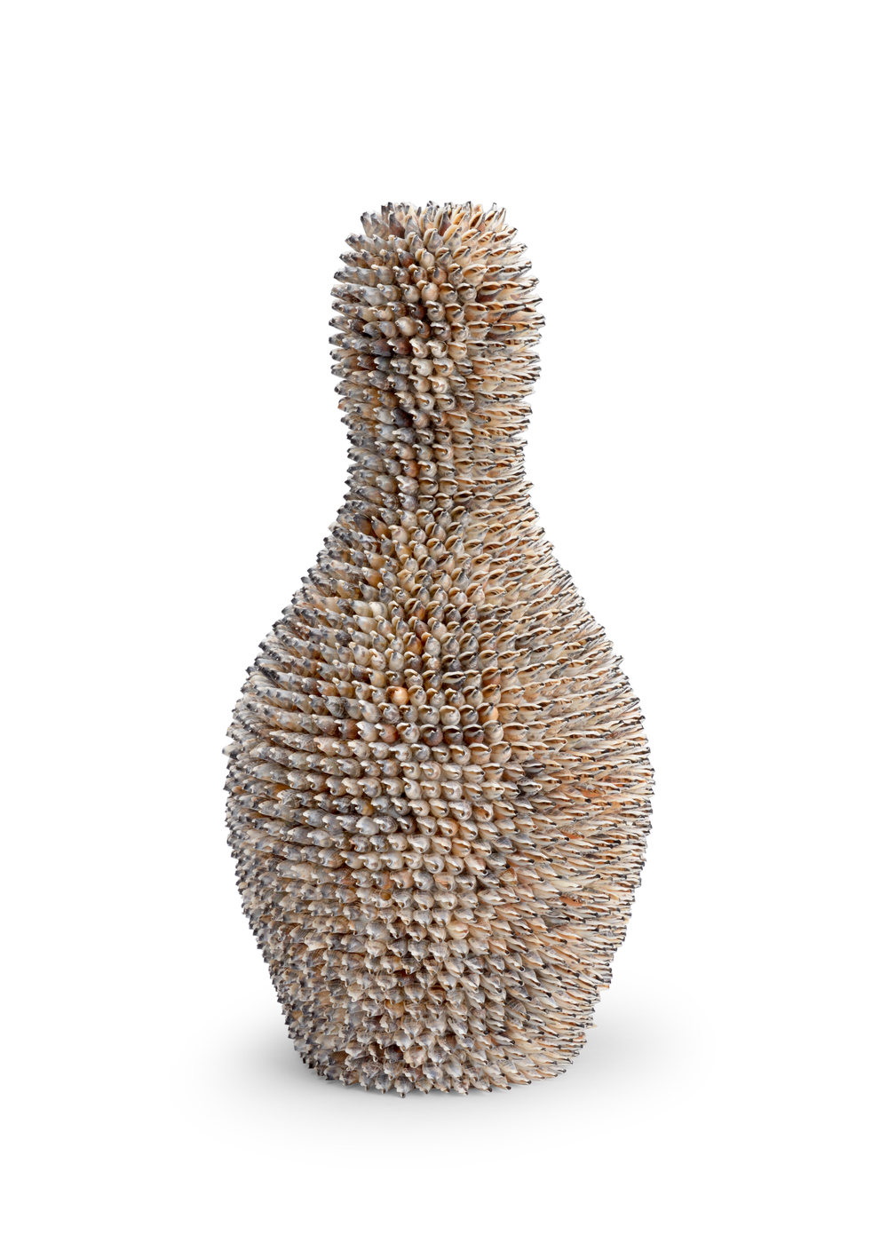 Chelsea House - Strombus Shell Accent Vase