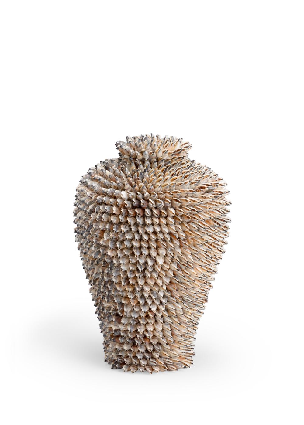 Chelsea House - Strombus Shell Vase