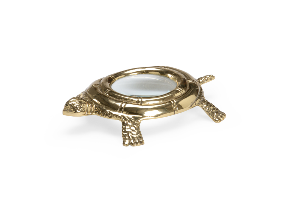 Chelsea House - Turtle Magnifier