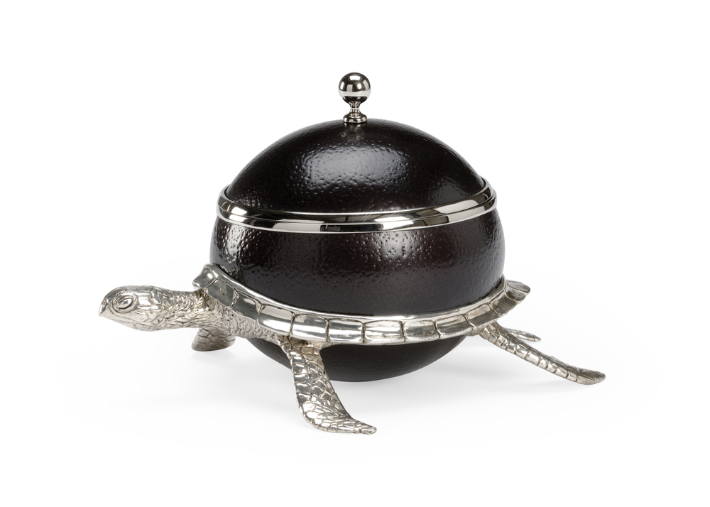 Chelsea House - Ostrich Shell Turtle Box
