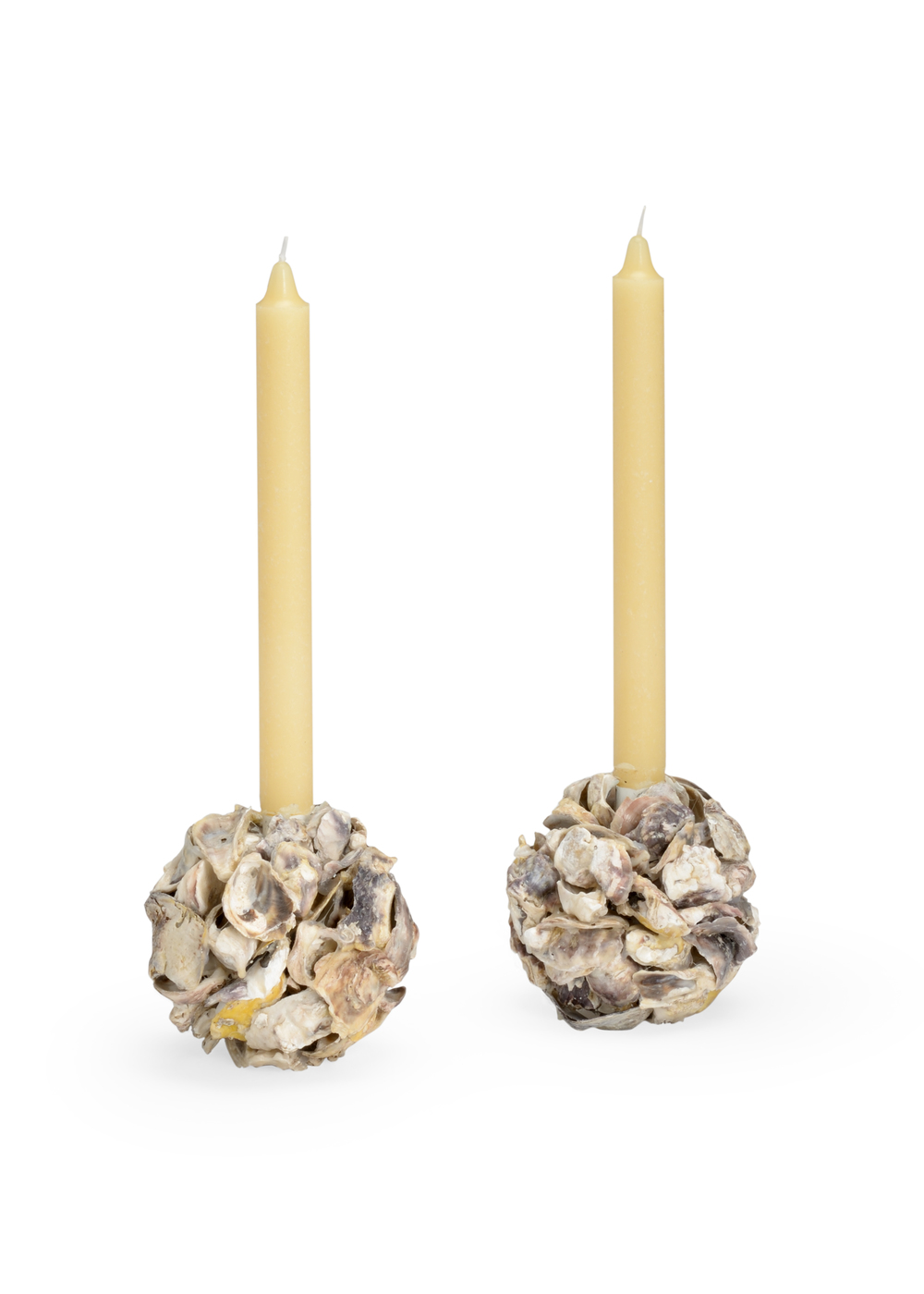 Chelsea House - Oyster Shell Candle Holder, Pair