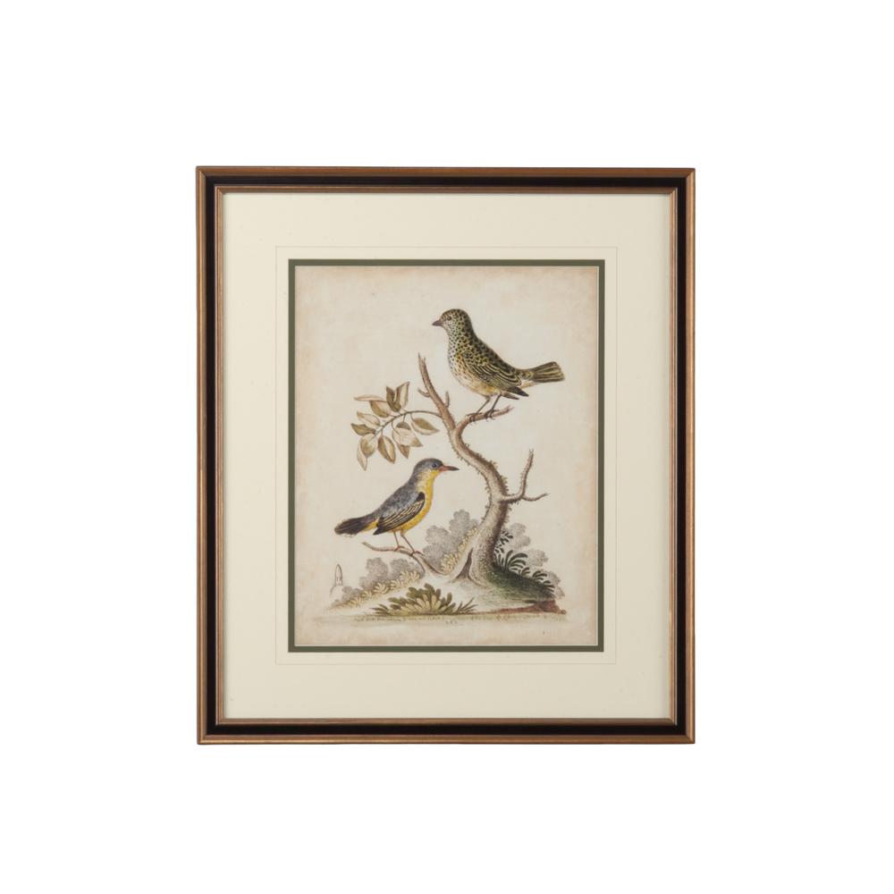 Chelsea House - Edwards Bird Pairs VII