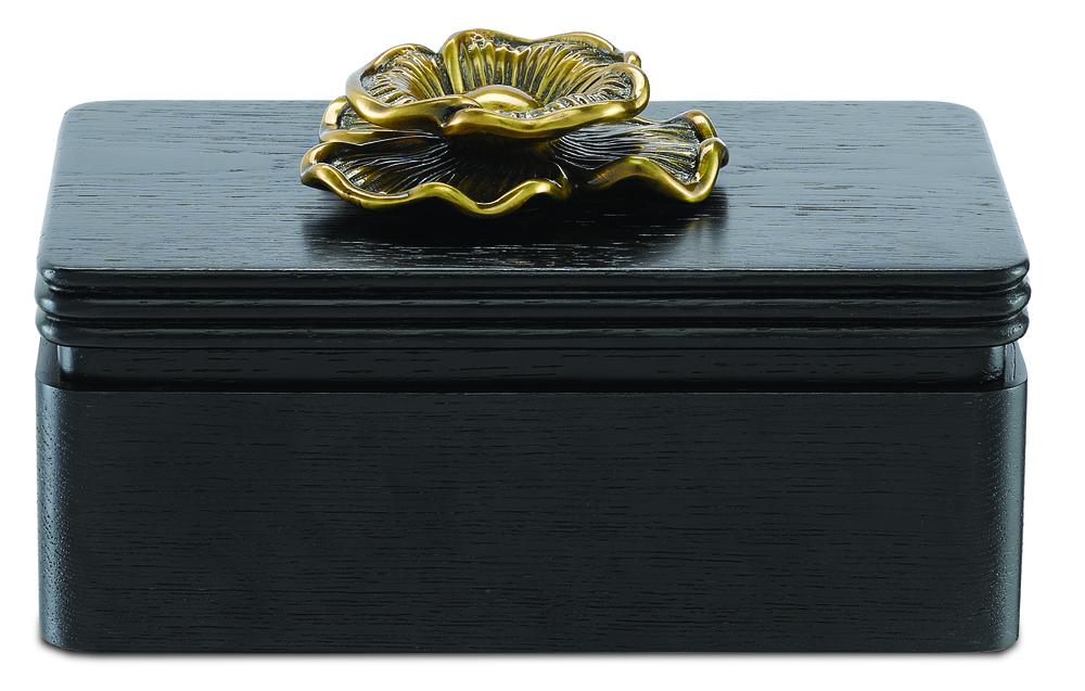 Currey & Company - Briallen Black Box