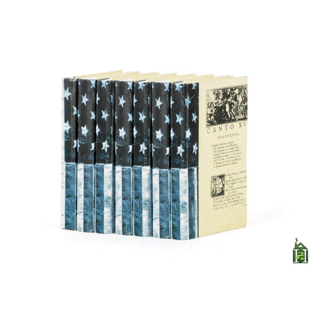 Go Home - Linear Foot of US Flag Denim Vintage Books