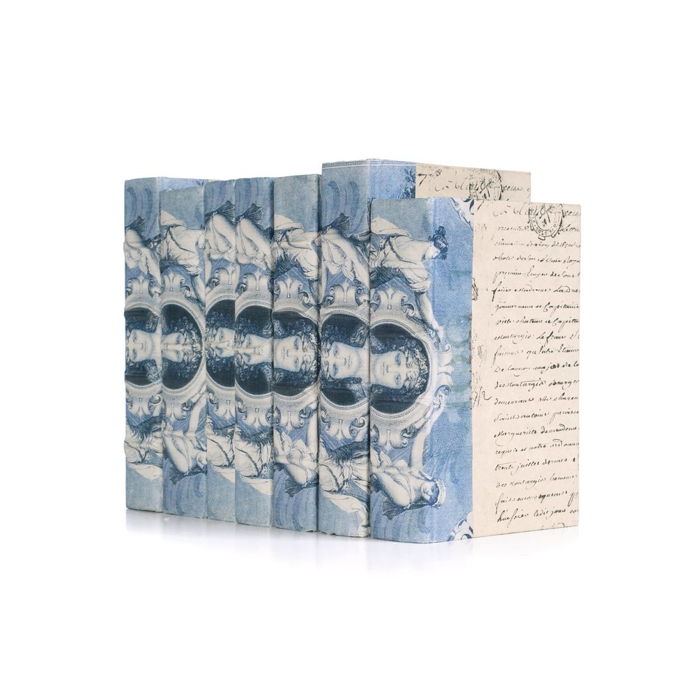 Go Home - Linear Foot of Blue Euro Beaux Arts Goddess Books
