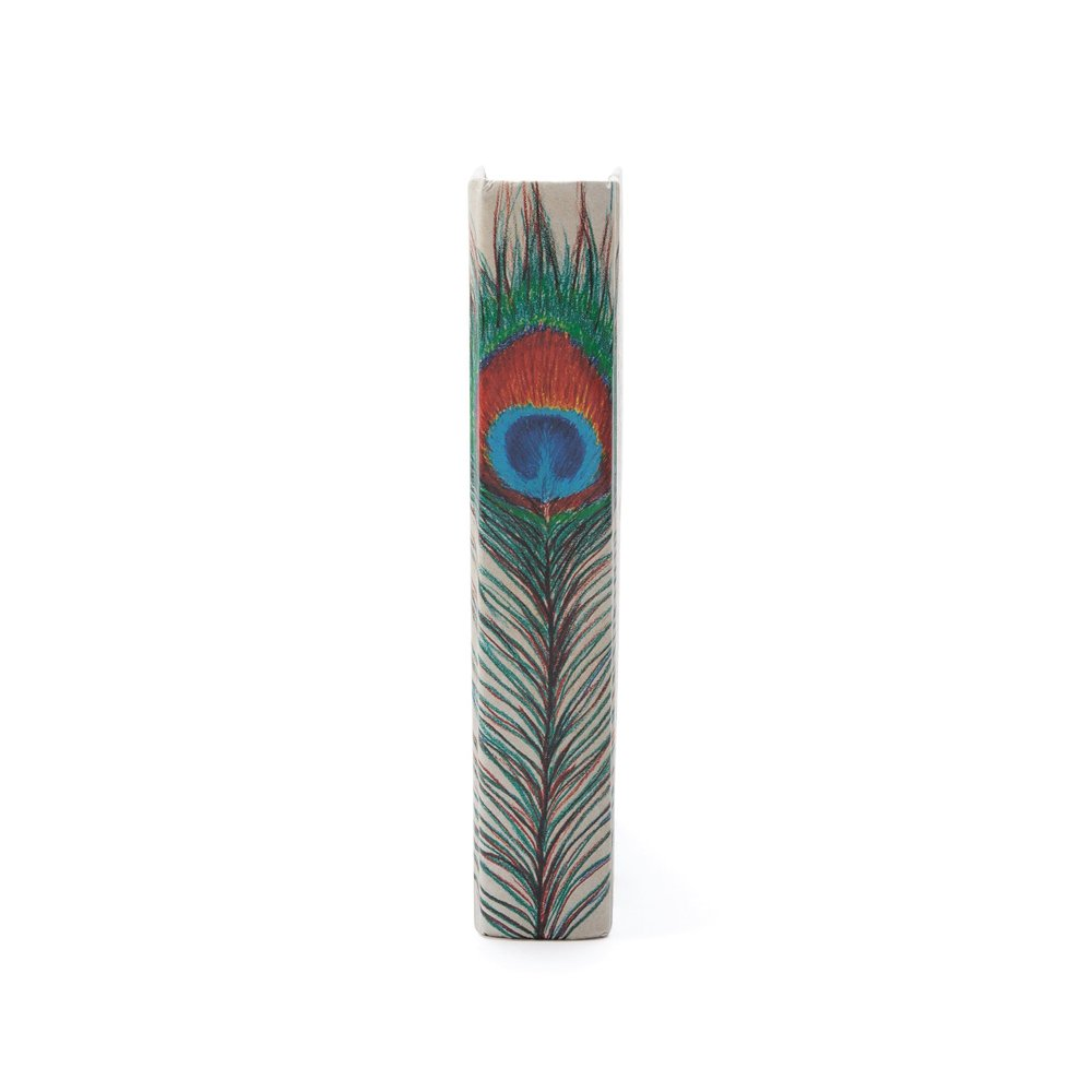 Go Home - Single Peacock Feather Book