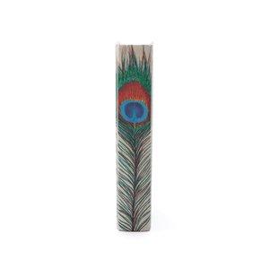 Thumbnail of Go Home - Single Peacock Feather Book