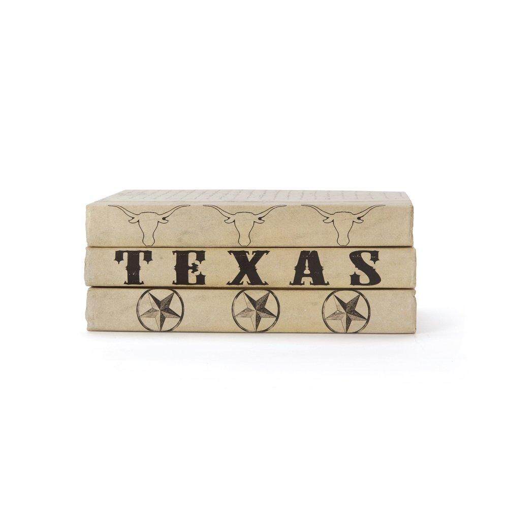 Go Home - Texas Books, Set/3