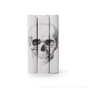 Thumbnail of Go Home - White Skull Books, Set/3
