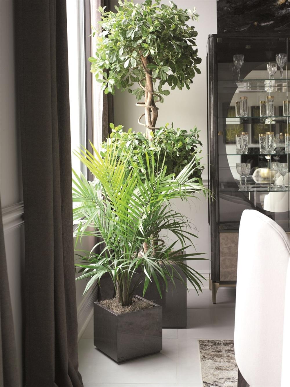 Hurtado - Medium Planter