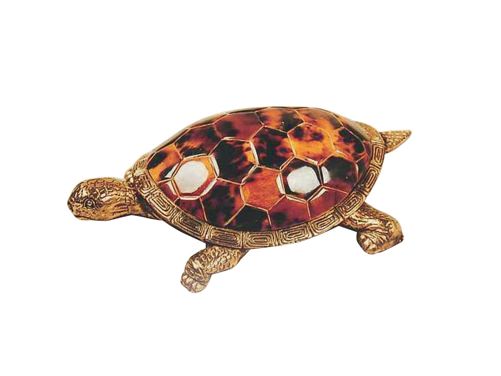 Maitland-Smith - Young Turtle Accessory