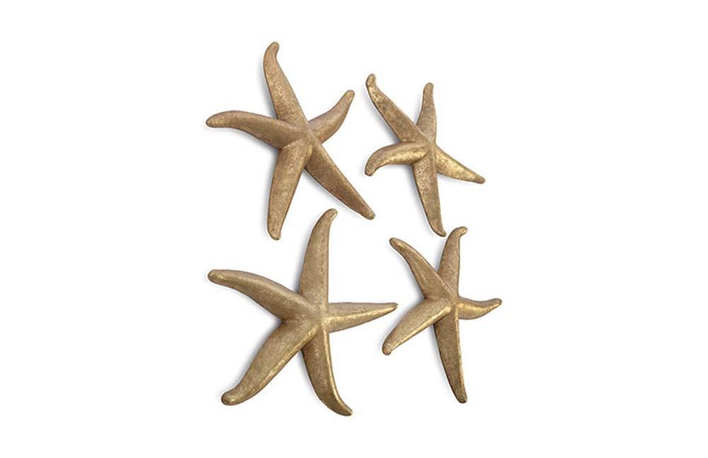 Phillips Collection - Starfish