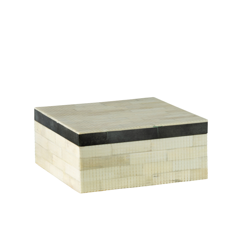 Theodore Alexander-Quick Ship - Dash Large White / Black Box