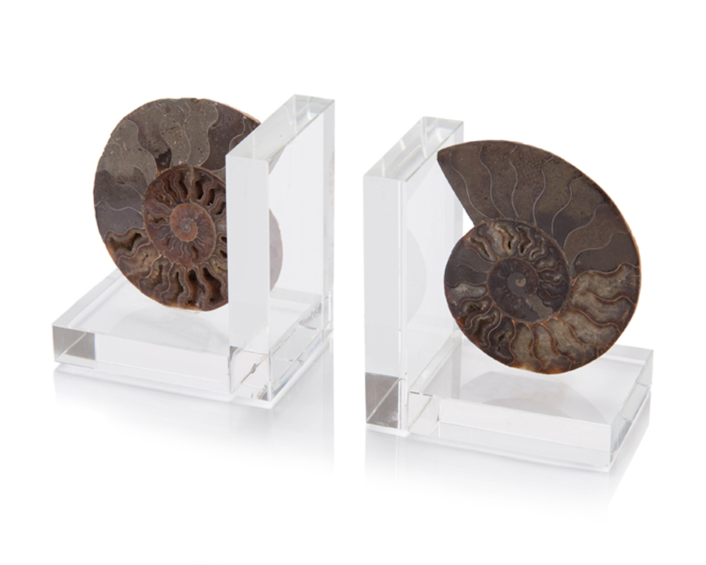 John Richard Collection - Two Ammonites on Crystal Bookends, Set/2