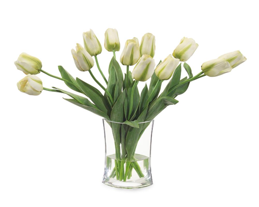 John Richard Collection - Simply Tulips