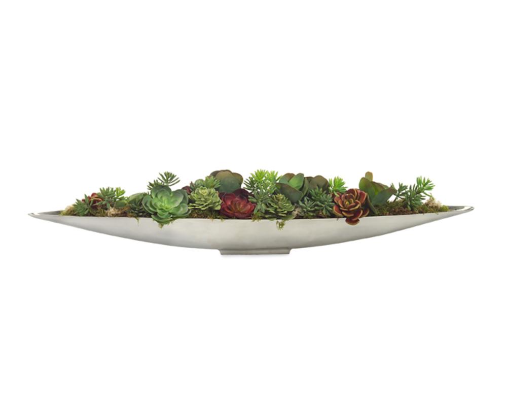 John Richard Collection - Succulent Garden