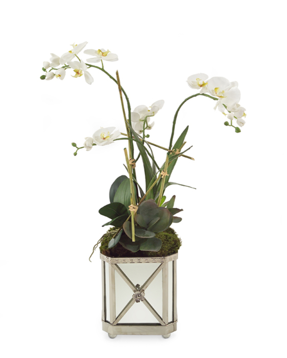John Richard Collection - Silver Orchids