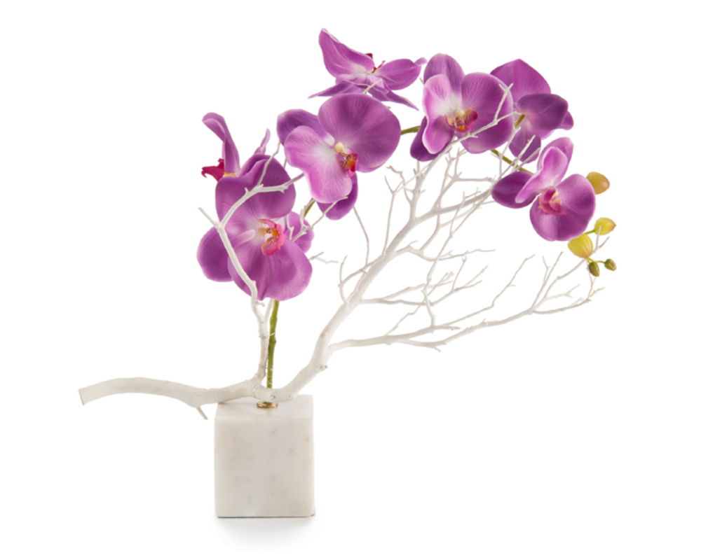 John Richard Collection - Marble Orchids