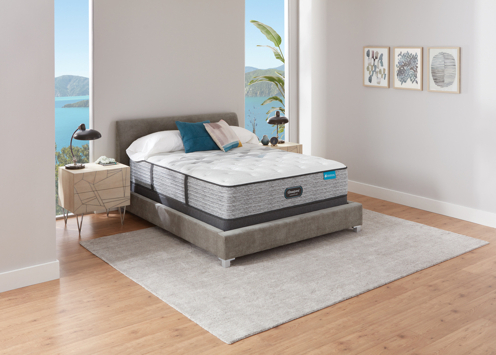 Beautyrest - Beautyrest Harmony Lux Carbon Plush Mattress with Standard Box Spring