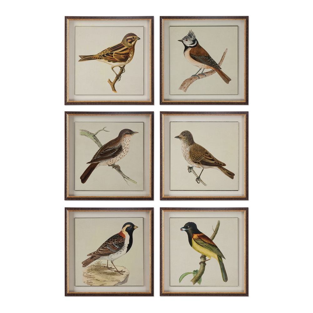 Uttermost Company - Spring Soldiers Framed Prints, Set/6