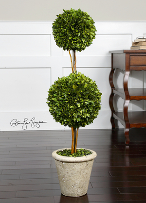 Thumbnail of Uttermost Company - Preserved Boxwood, Two Sphere Topiary