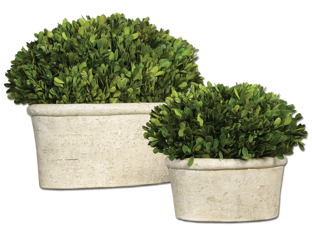 Uttermost Company - Preserved Boxwood, Oval Domes, Set/2