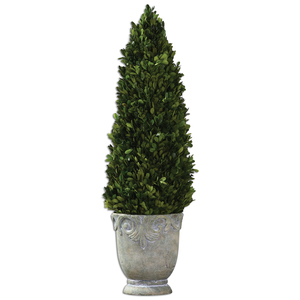 Thumbnail of Uttermost Company - Boxwood Cone Topiary