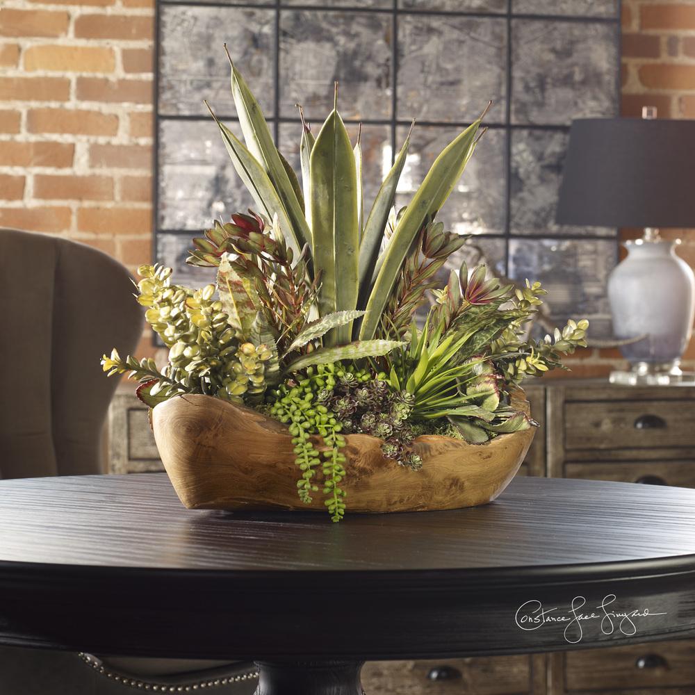 Uttermost Company - Salar Succulents in Teak Bowl