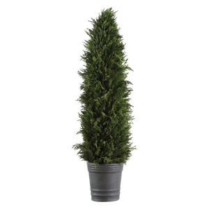 Thumbnail of Uttermost Company - Cypress Cone Topiary