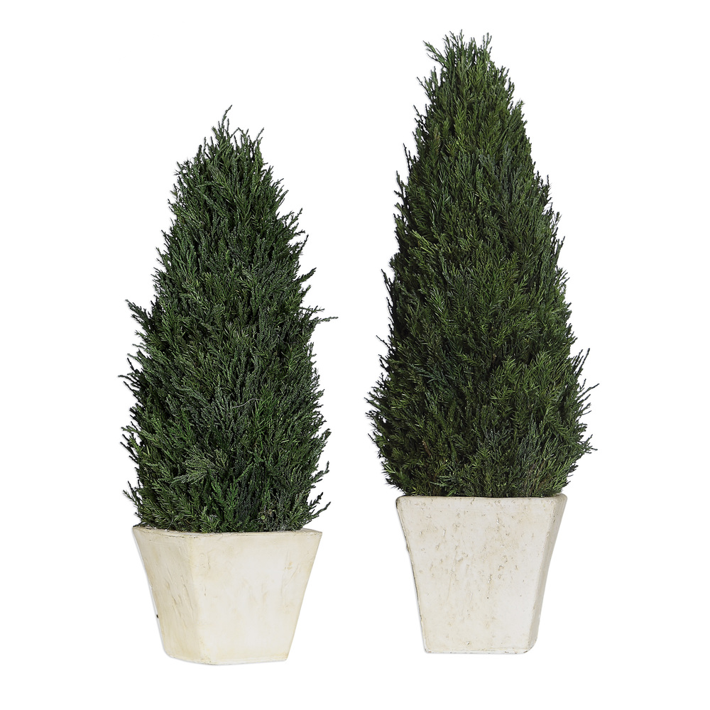 Uttermost Company - Cypress Cone Topiaries, Set/2