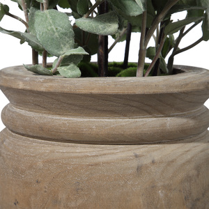 Thumbnail of Uttermost Company - Tassos Potted Olive