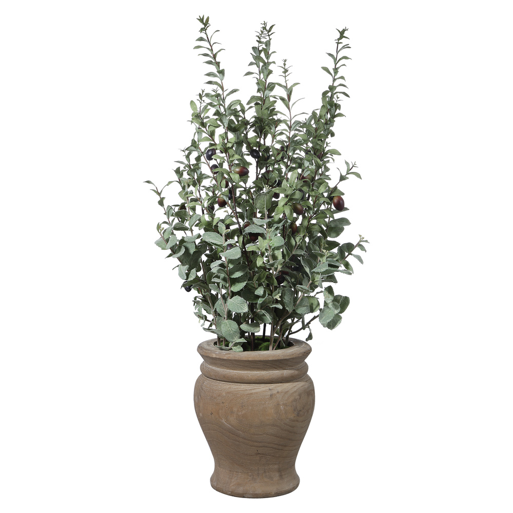 Uttermost Company - Tassos Potted Olive