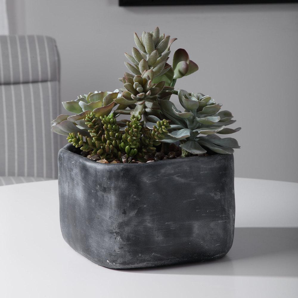 Uttermost Company - Alverio Succulents